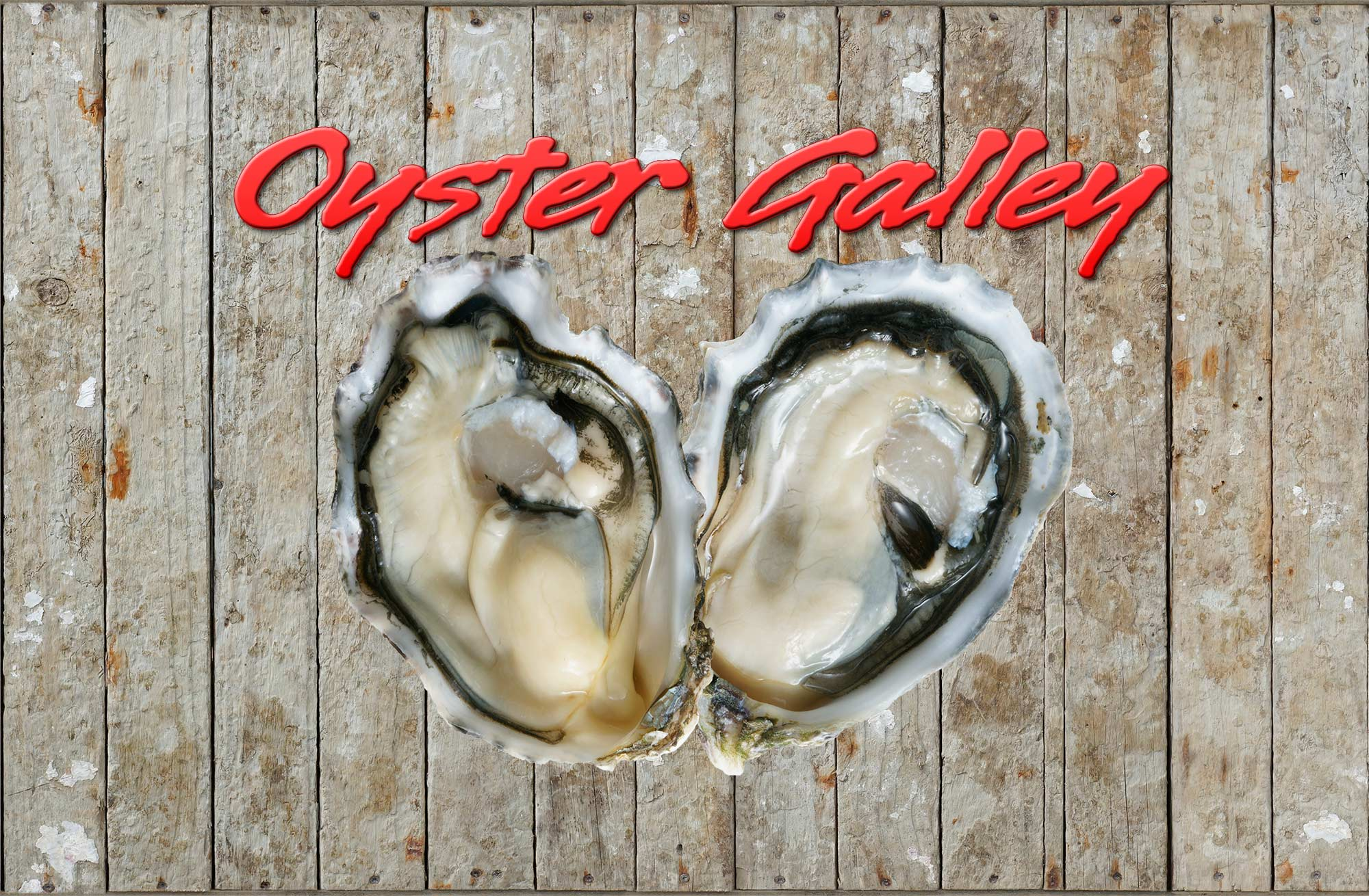 Oyster Galley